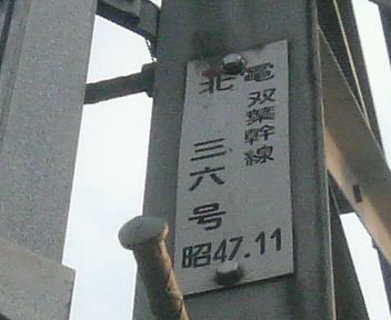 P1130219.JPG