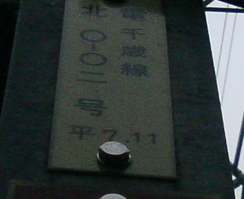 P1130276.JPG