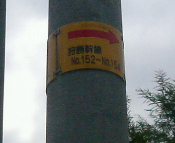 P1130877.JPG