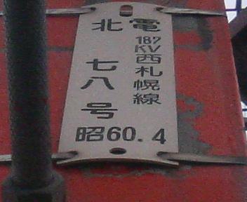 P1131051.JPG
