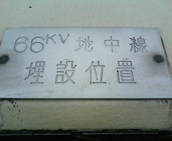 P1130169.JPG