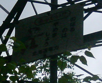 P1130379.JPG
