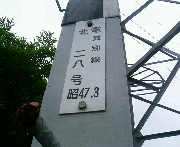 P1130560.JPG